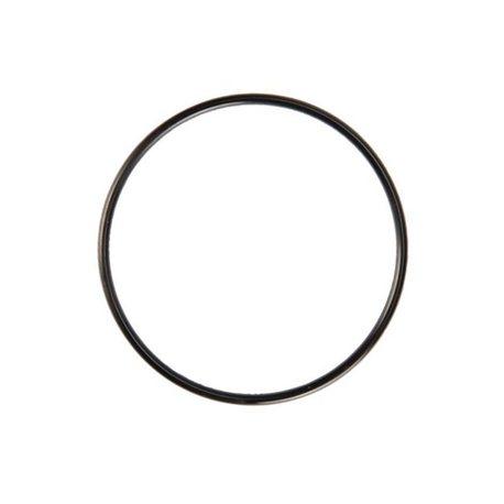 Pierścień uszczelniający Briggs & Stratton 806466
