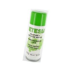 Aerozol rozpryskowy w kolorze zielonym Etesia