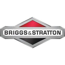 Gaźnik Briggs & Stratton