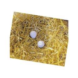 Sztuczne jaja, 2 szt. Kerbl