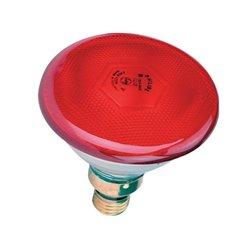 Promiennik PAR, czerwony 100 W Philips